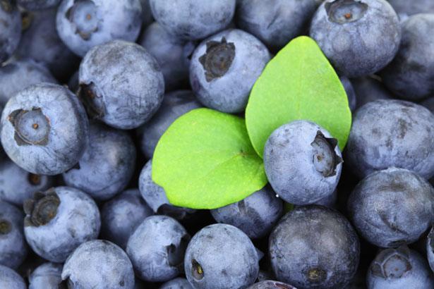 Frutta salute mirtilli blu