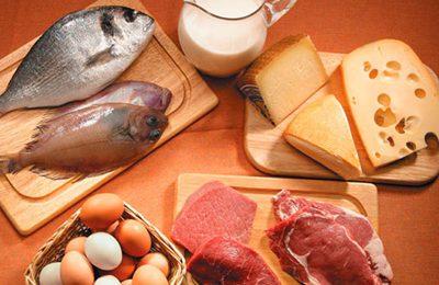 Dieta proteica? Solo se i reni lavorano bene