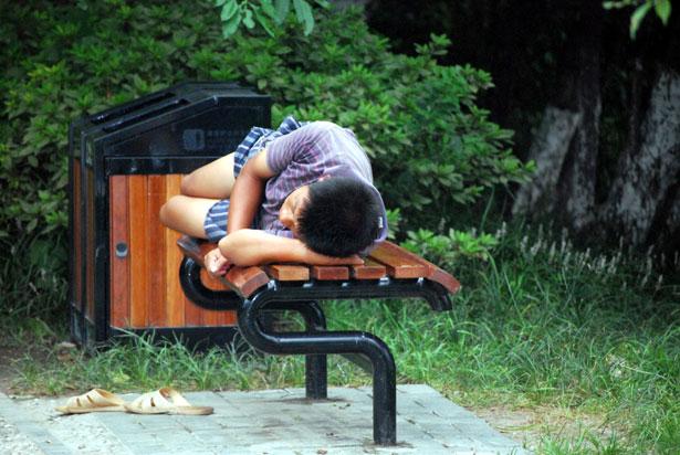 Narcolessia, cos'è e cosa fare