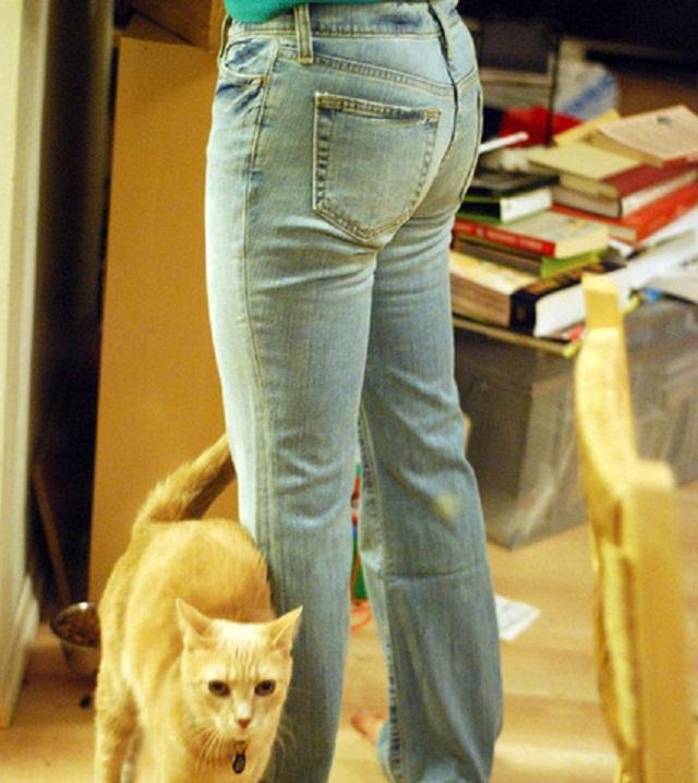 jeans sfilacciati
