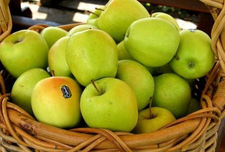 Le mele bruciano i grassi e mantengono basso il colesterolo