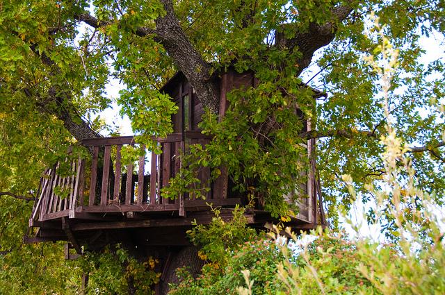 Come costruire una casa sull'albero per i bambini