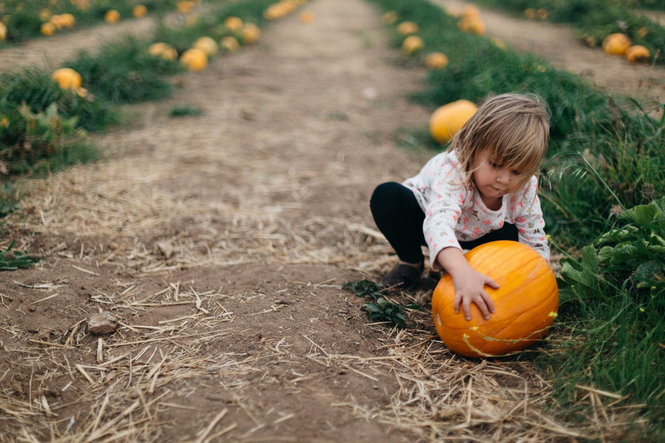 Filastrocche in rima per bambini sull'autunno [VIDEO]