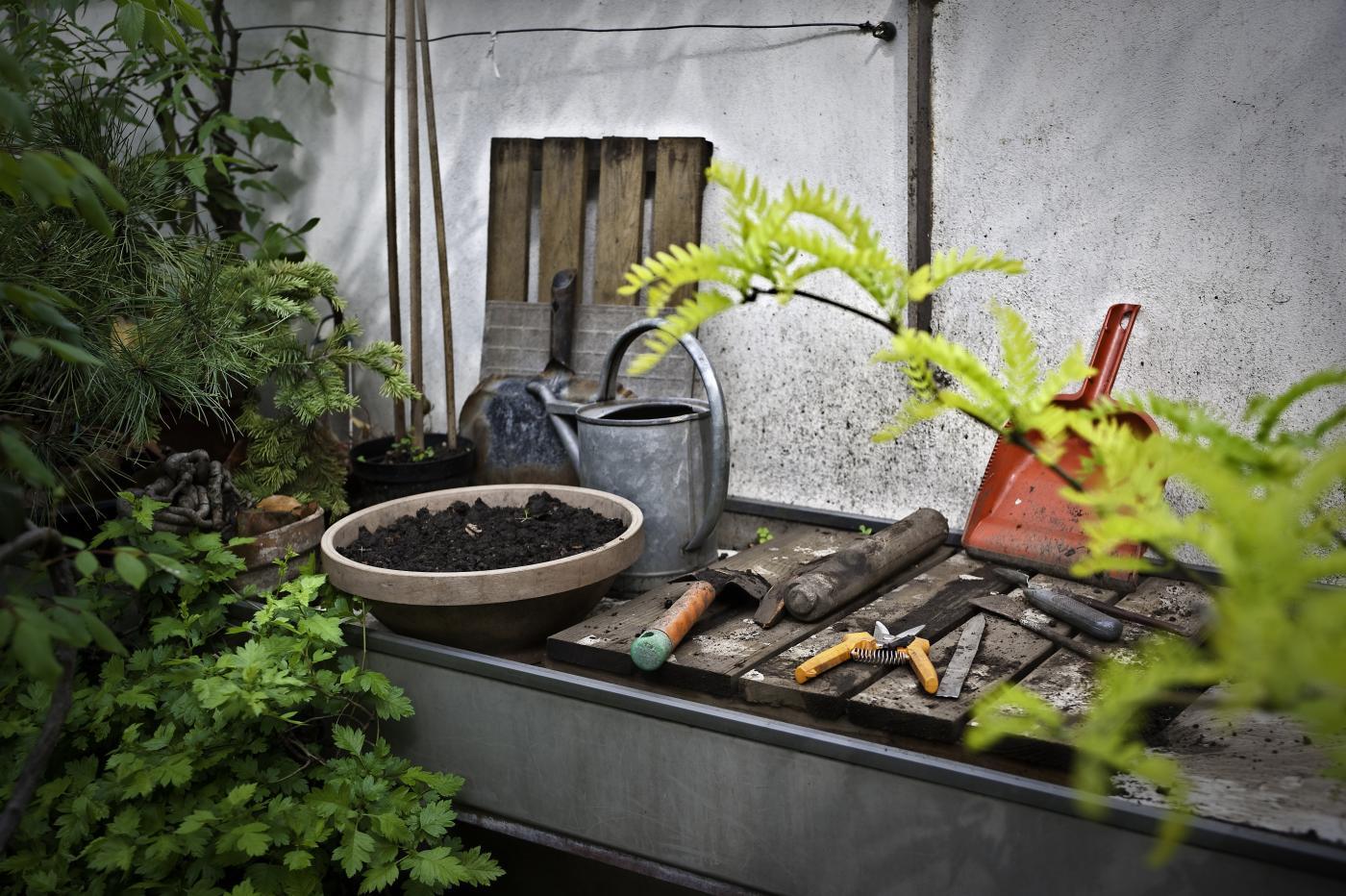 Green Gym, fare ginnastica prendendosi cura dell'orto o del giardino