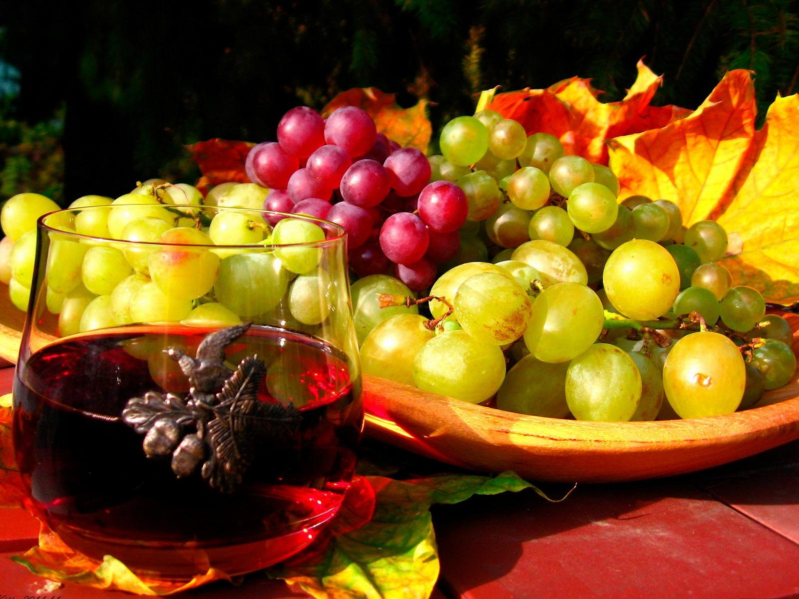 grapes_fruit_plate_grades_autumn_leaves_wine_5861_1600x1200