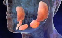 Orecchioni negli adulti: sintomi e cure