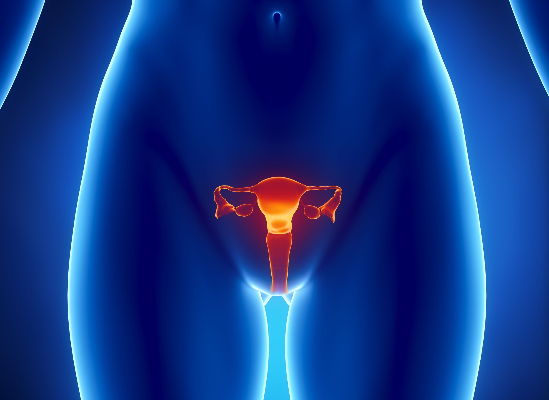 Tampone vaginale