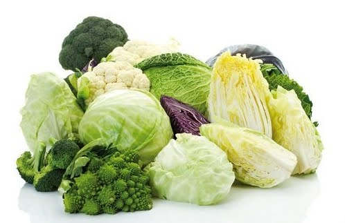 verdura foglia verde