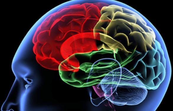 Tumore al cervello: sintomi, cause e cure