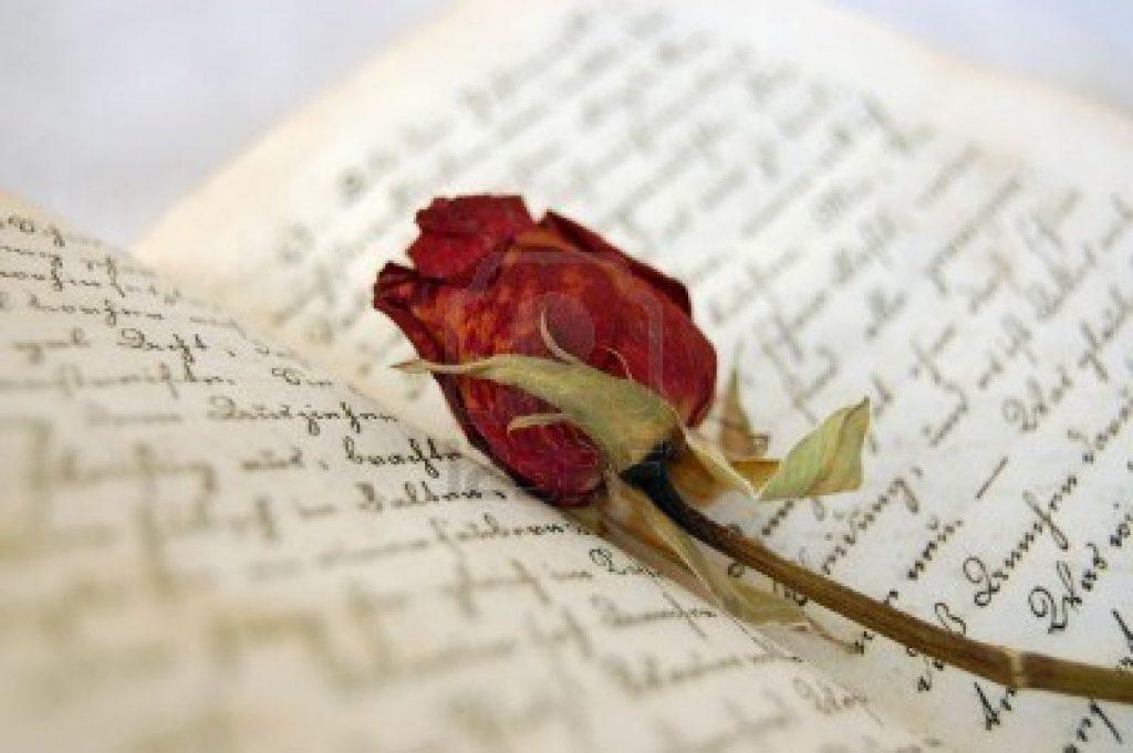 Anniversario Di Matrimonio In Spagnolo.L5abx Dh9de3wm