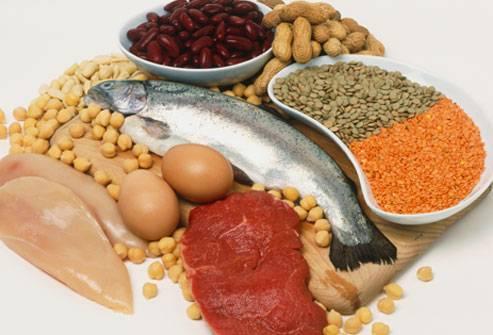 proteine ani