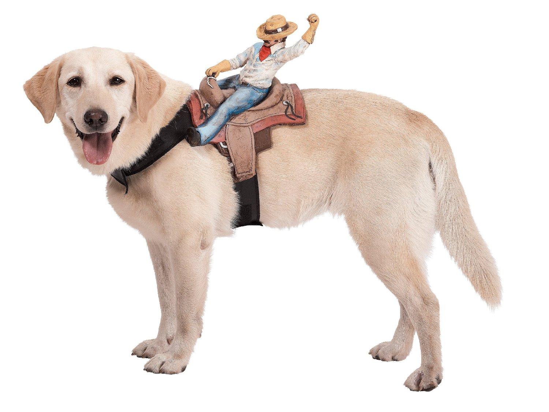 Pettorina da cowboy