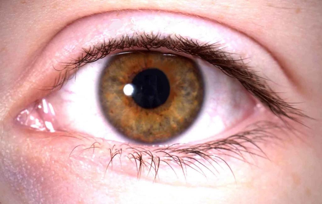 Maculopatia: i sintomi e le cure possibili