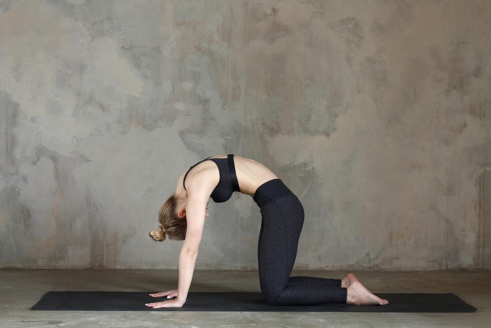 posizione yoga gatto fertilita