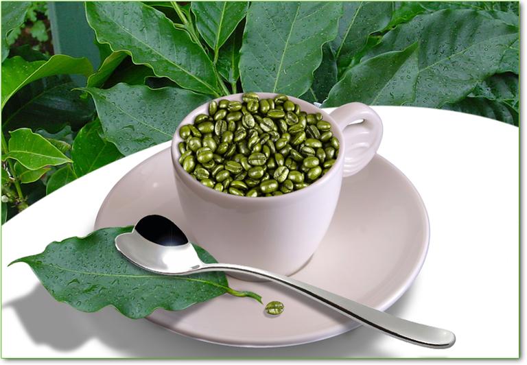 tazzina di caffe verde