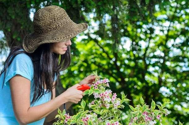 Attrezzi per il giardinaggio: prezzi e modelli indispensabili