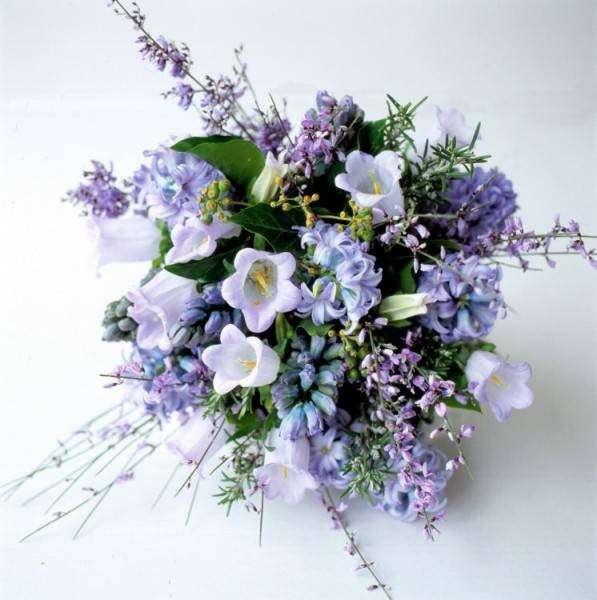 Che fiore regalare per la nascita? Consigli per la scelta [FOTO]