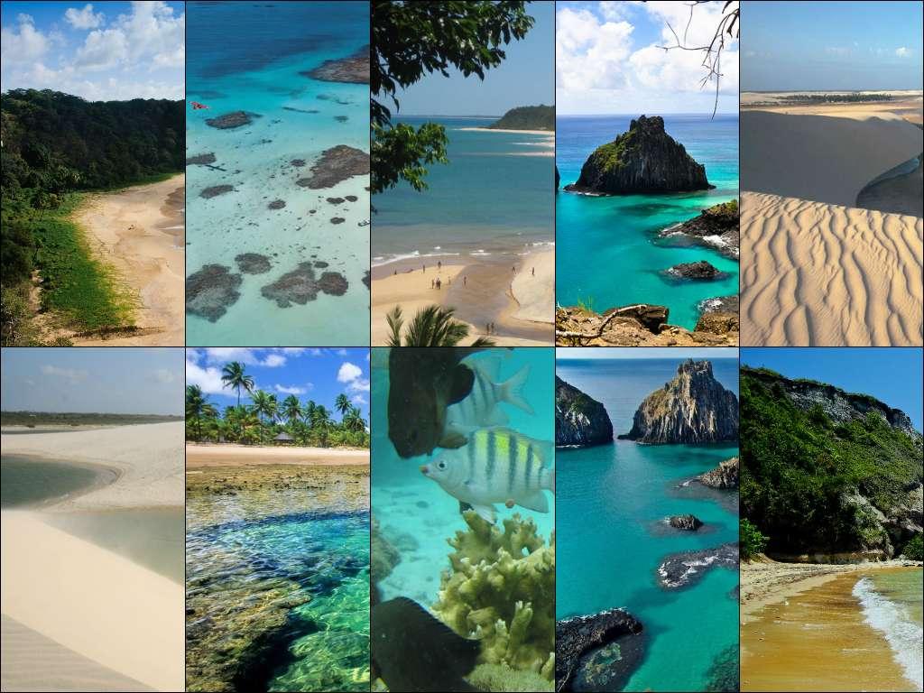 Spiagge in Brasile