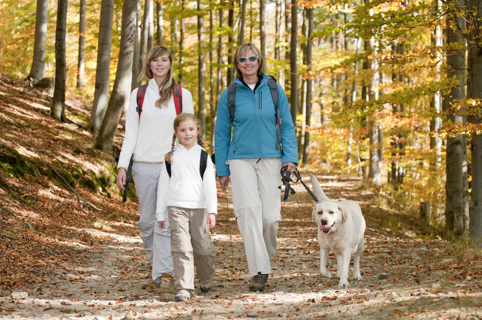 Vacanza in montagna: idee low cost per cani e bambini