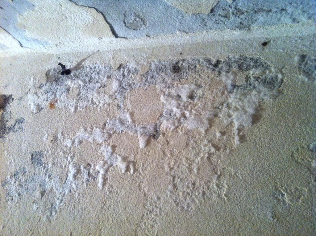 Come sconfiggere l 39 umidit in casa consigli utili pourfemme - Come ridurre l umidita in casa ...