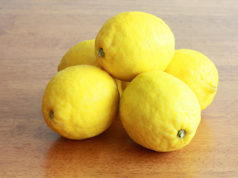 Come coltivare i limoni: una guida utile