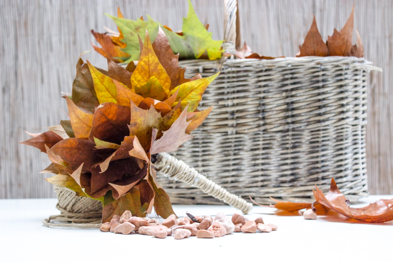 bouquet di foglie