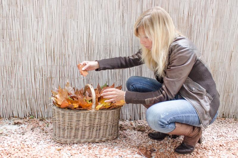 sistemazione foglie secche