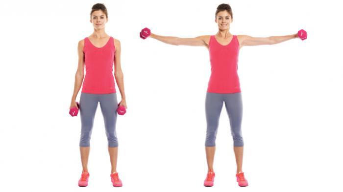 Esercizi braccia