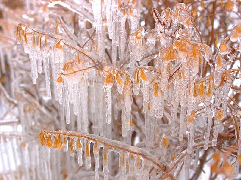 Paesaggi naturali in Inverno: i più belli [FOTO]