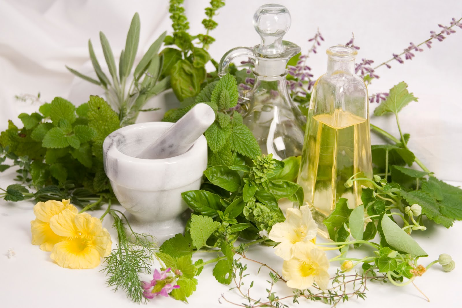 Conosci bene i rimedi naturali ? [QUIZ]