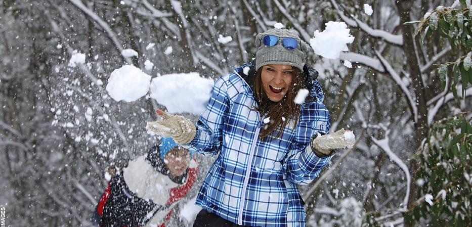 attivita neve