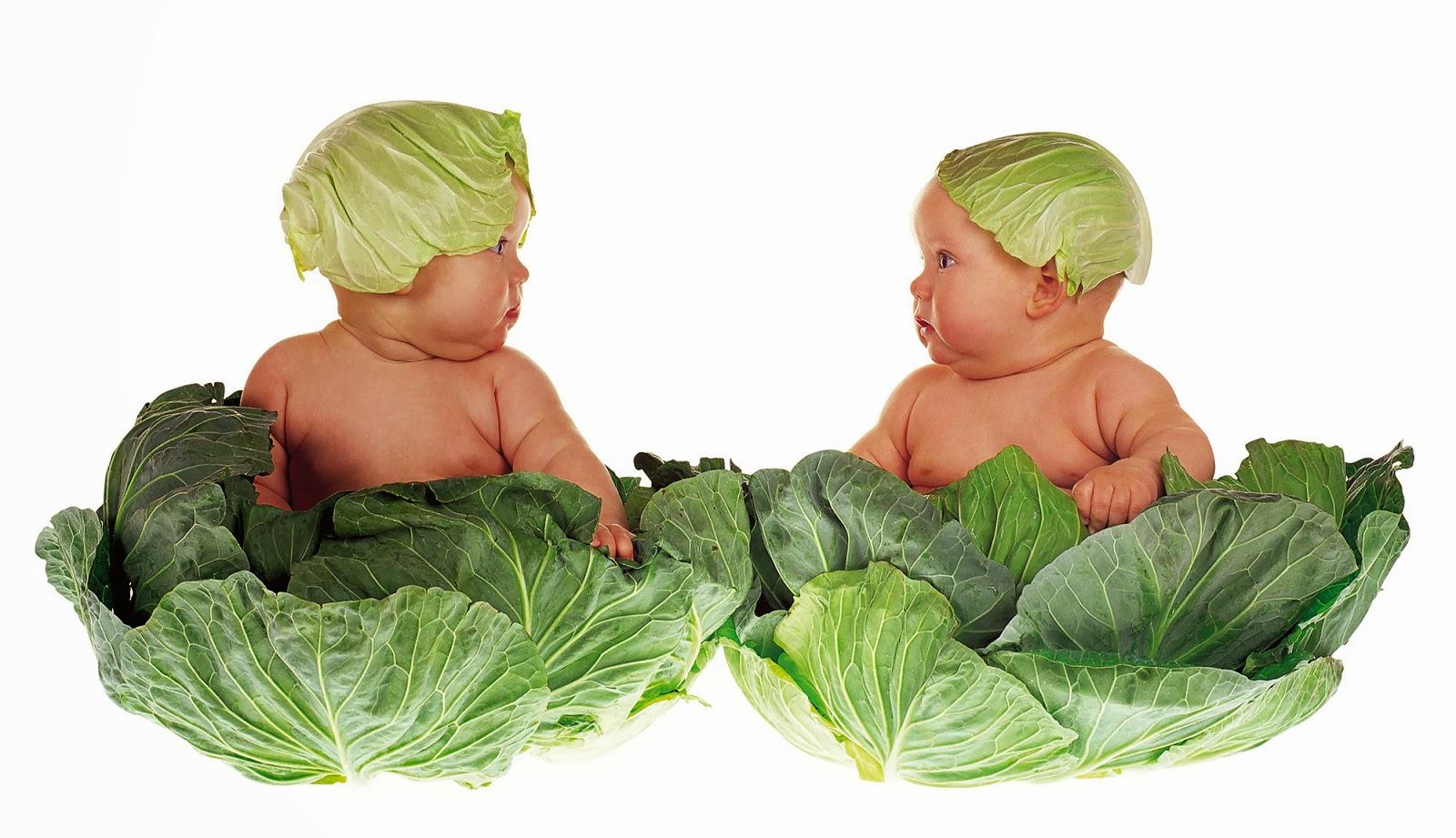 Svezzamento vegetariano: schema, tabella, pro e contro
