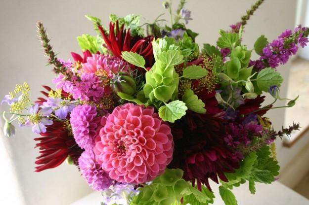 Quale fiore primaverile preferisci?
