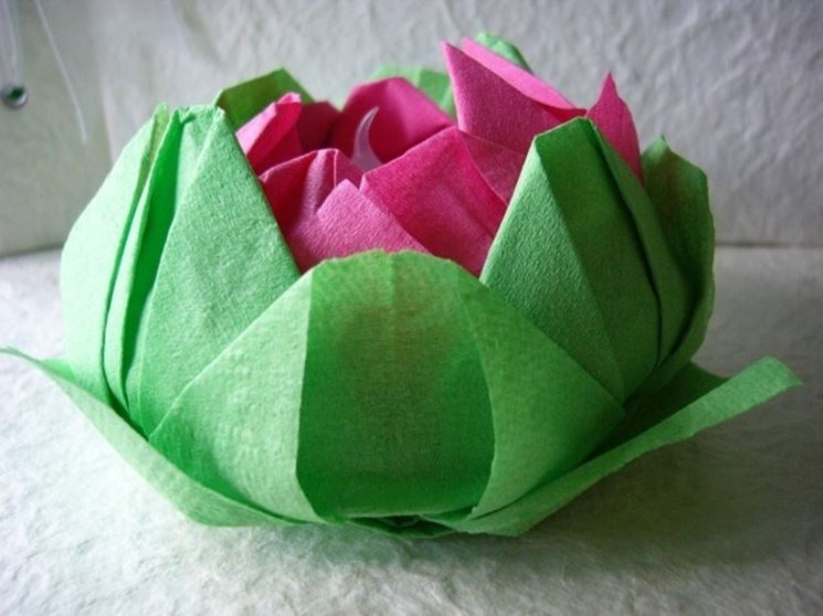 fiore-di-loto