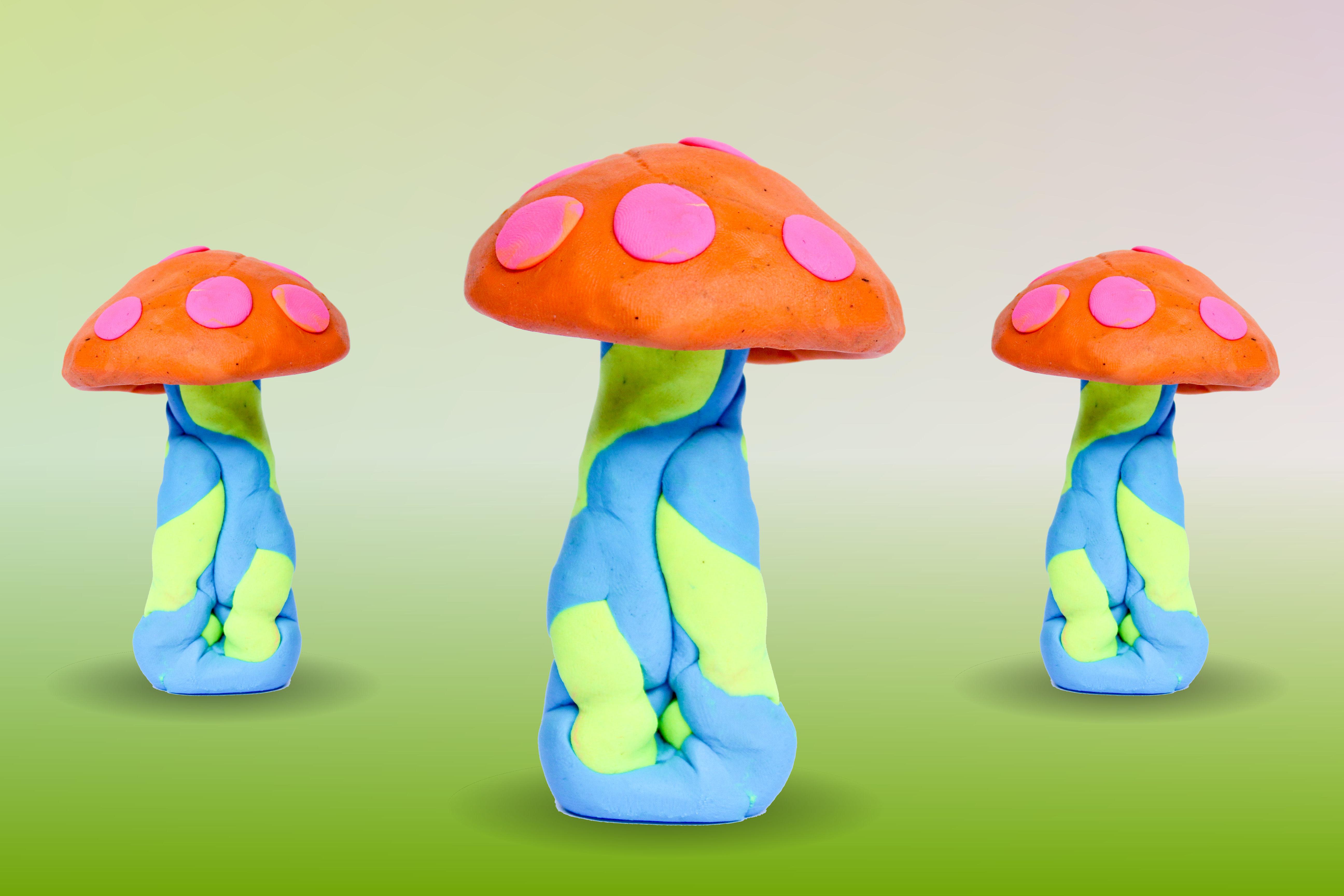 funghi-a-pois