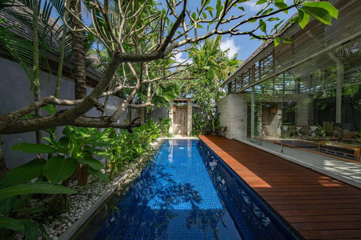 Piscina in un giardino con piante tropicali