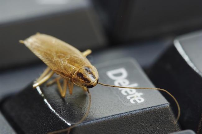 rimedi scarafaggi