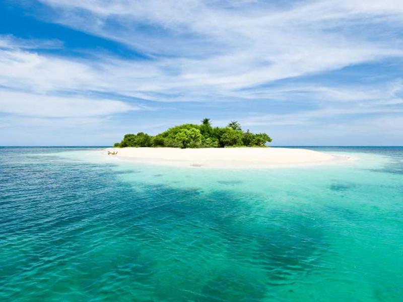 Sapresti sopravvivere su un'isola deserta? [TEST]