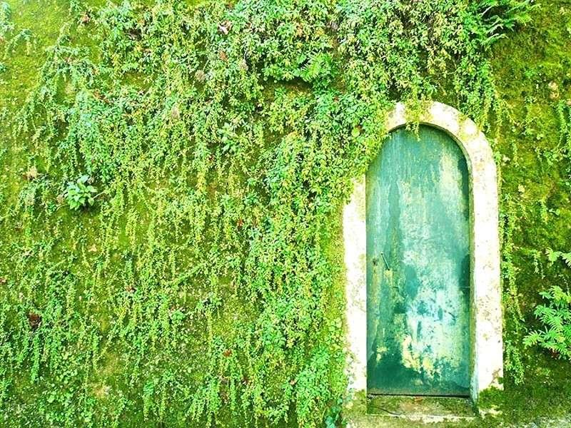 Le porte più belle del mondo [FOTO]