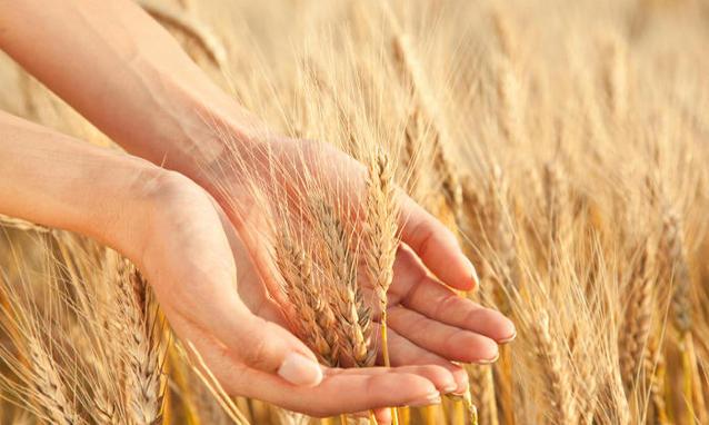 Potresti essere sensibile al glutine? [TEST]