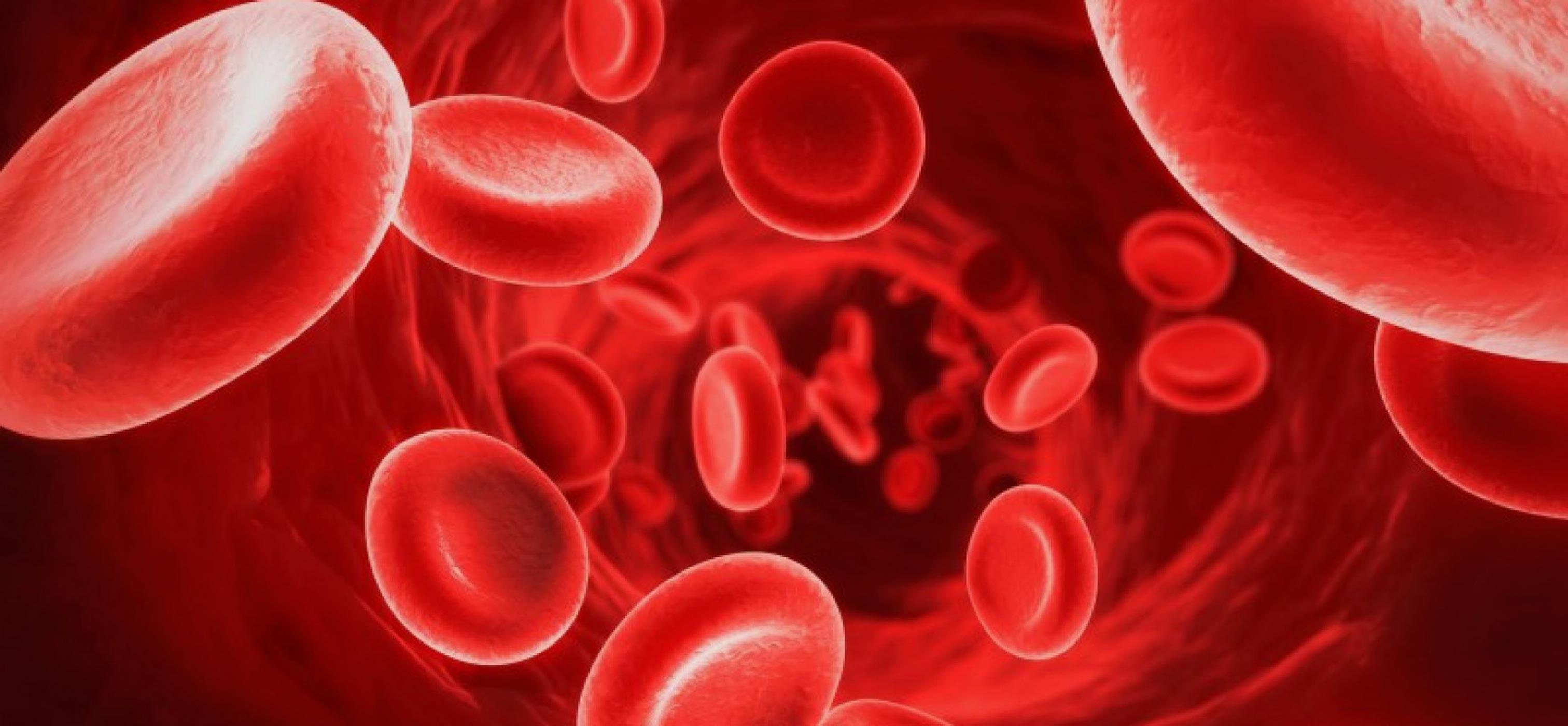 Emofilia: sintomi, cause e cure