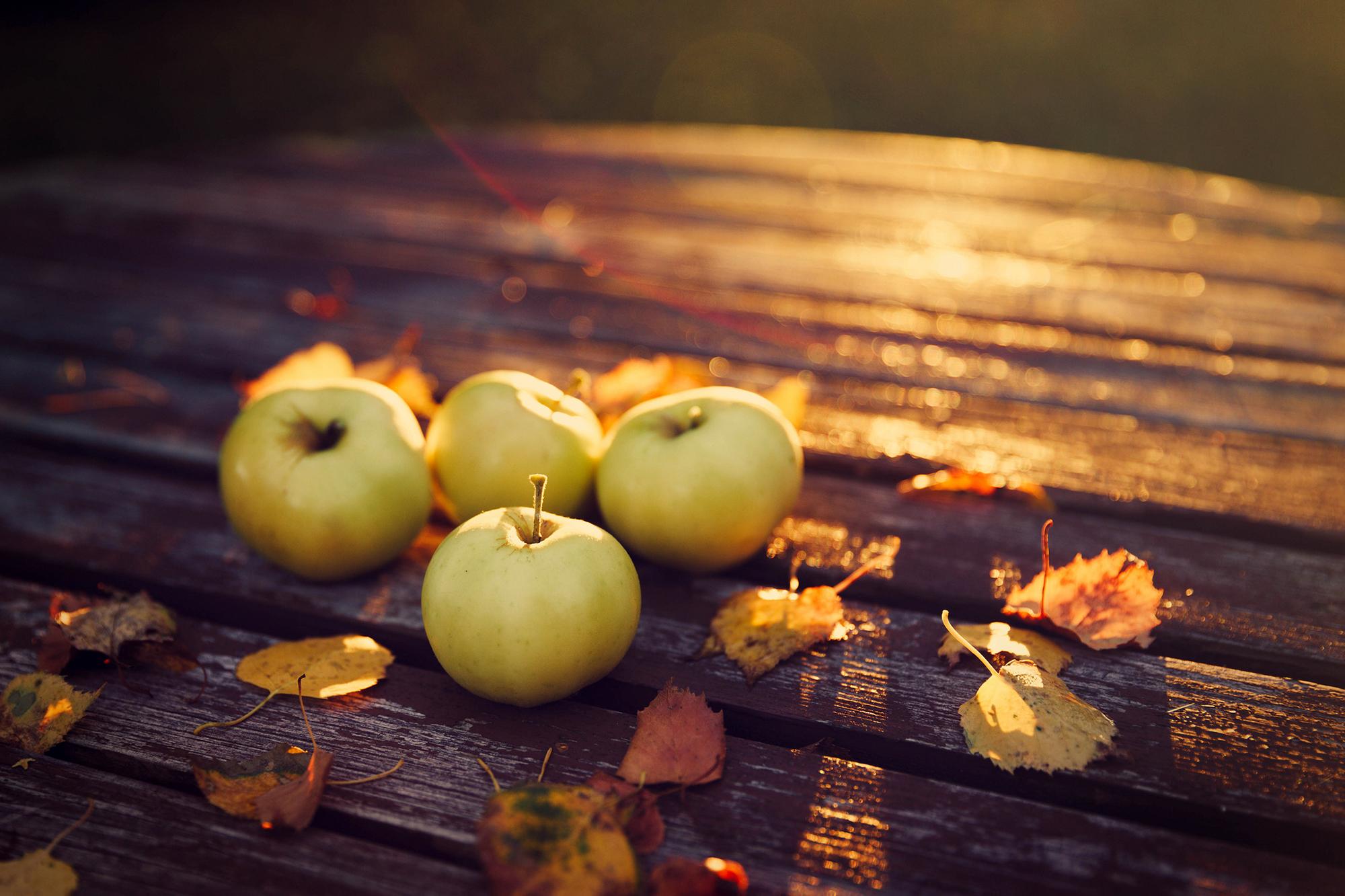 Dieta per l'autunno