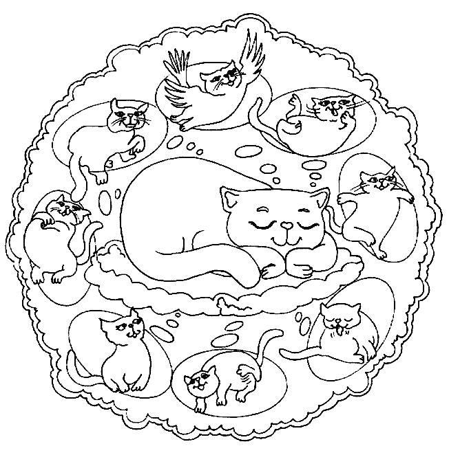 Mandala-con-gatti
