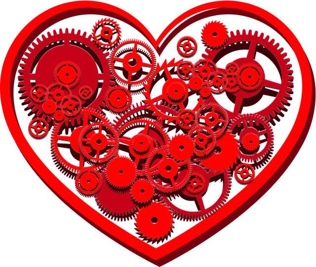Sai come funziona il cuore? [QUIZ]