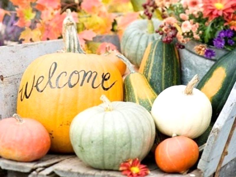 Quale decorazione di Halloween con le zucche preferisci?