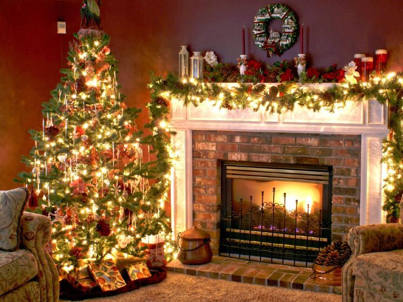 Quale albero di Natale fa per te? [TEST]