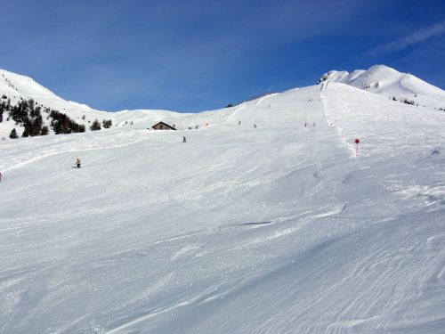 n_01 tonale pista alpino