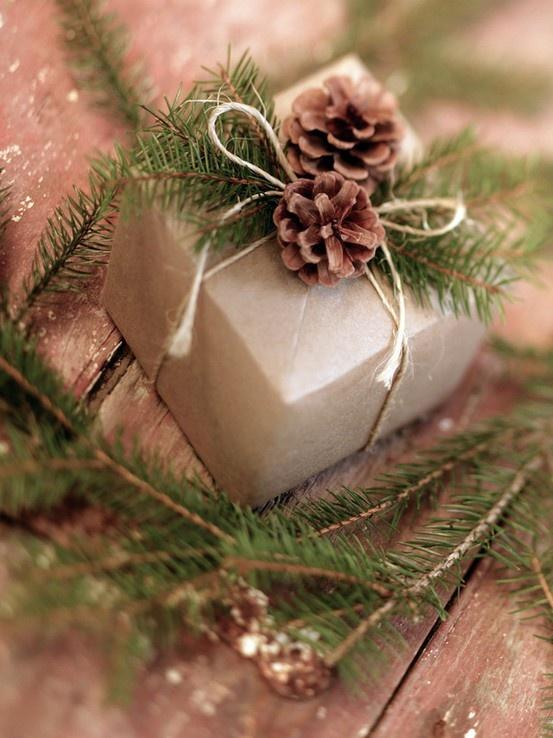 Pacchetto regalo con pino e pigne