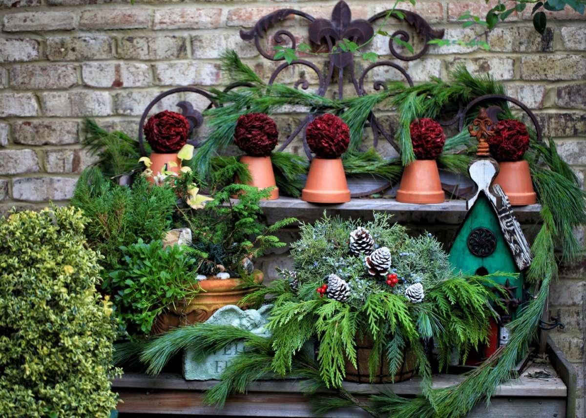 Il giardino in inverno fiori piante e decorazioni per uno spazio esterno bellissimo foto - Decorazioni per giardini ...