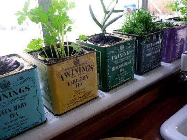 Barattoli del tè come vasi vintage